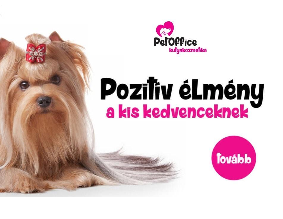 Weboldal készítés Pet Offfice refferencia